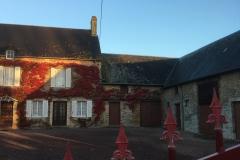 Huis met rode klimop